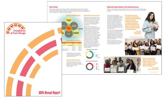 FEC annual report non profit